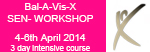 Bal-A-Vis-X SEN Workshop