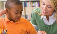 SENCOs need to help identify issues for individual pupils and suggest solutions.